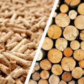 Pellets or Wood to heat the home